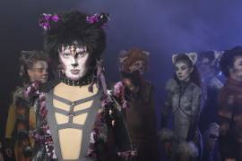 Cats the Musical Townsville